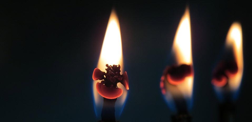 Candlestick patronen: herken de Japanse candles