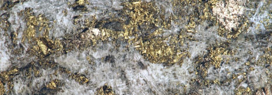 palladium metaal kopen