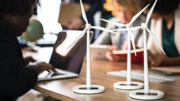 Groen beleggen en duurzaam beleggen